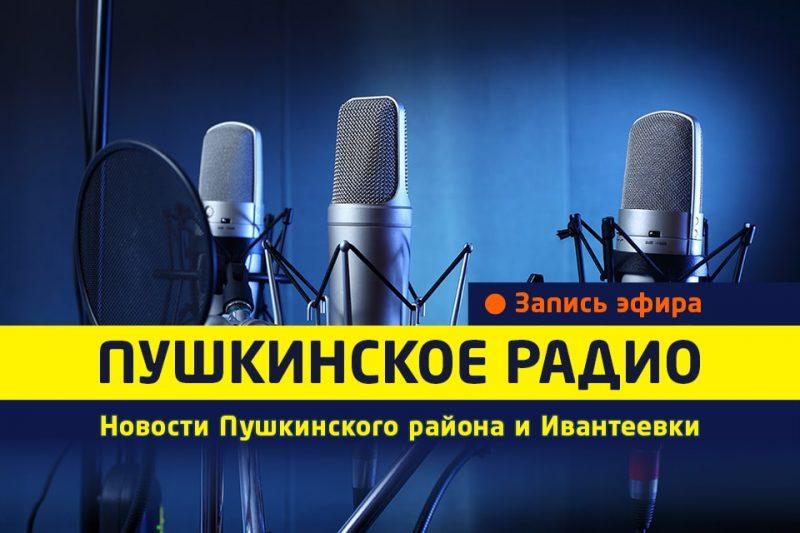 Новости Пушкинского радио от 09.01.17.