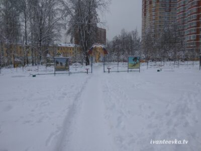 Улицы Ивантеевки после уборки снега 25