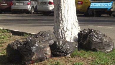 мешки мусора у дороги