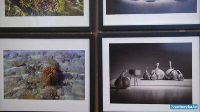 Photo of Открылась выставка «Крупным планом» фотоклуба «Пушкино»