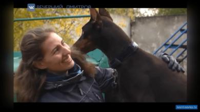 Кинолог с собакой