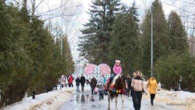 городской парк зимой