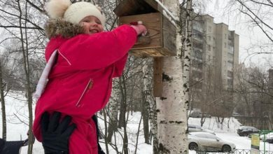 Photo of Воспитанники детского сада №2 вместе с родителями кормят птиц