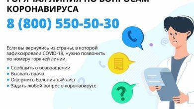 Photo of В Подмосковье начала работать Горячая линия по номеру 8-800-550-50-30