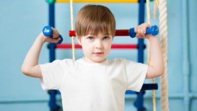 Photo of Распорядок дня, режим питания и тренировок для спортсменов в условиях самоизоляции
