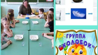 Photo of Занятие по формированию целостной картины мира прошло в детском саду №18