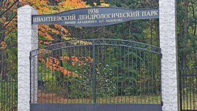 Photo of В начале мая возобновляются туристические маршруты по Ивантеевскому Дендрологическому парку