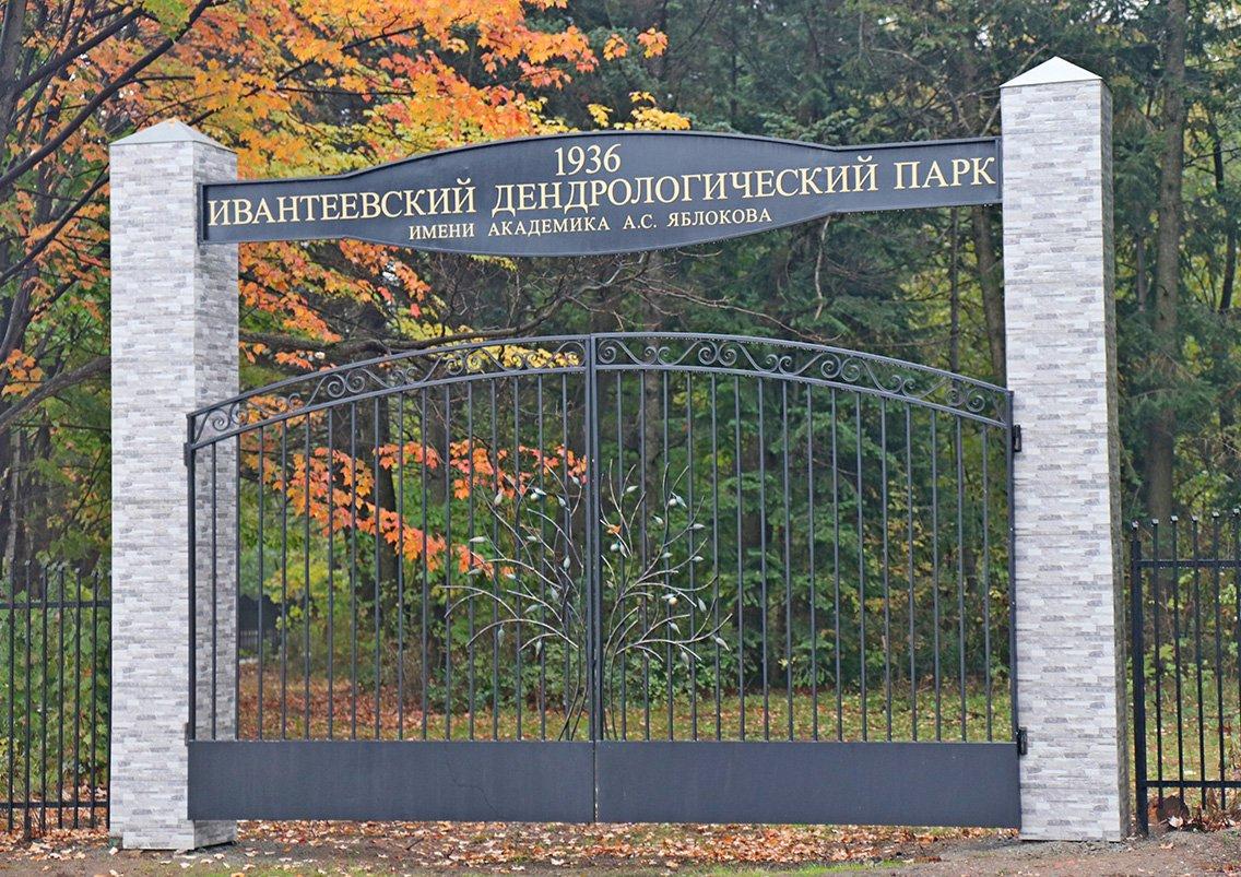 Ivanteevskij dendrologicheskij park