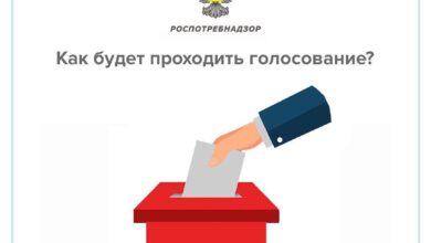 Photo of Как будет проходить голосование?