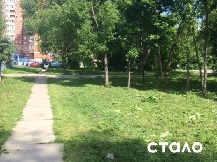 В Ивантеевке продолжаются работы по содержанию территорий
