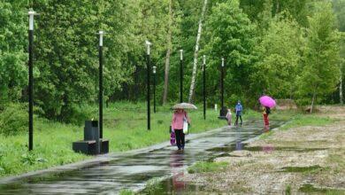 Photo of В Московской области начинают постепенно снижать ограничения