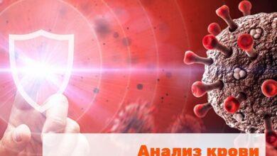 Photo of В Ивантеевской больнице можно сдать анализ на наличие антител к коронавирусной инфекции