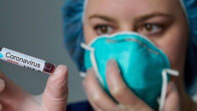 Photo of В Подмосковье от коронавируса вылечились более 41,6 тысячи заболевших