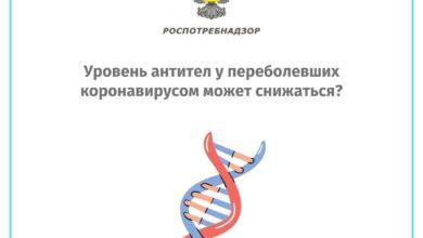 Photo of Уровень антител у переболевших коронавирусом может снижаться?