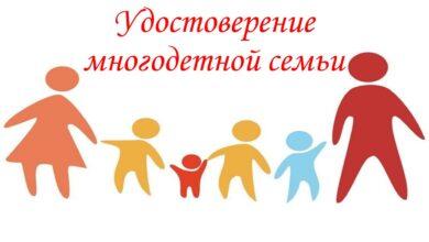 Photo of Получение мер социальной поддержки для многодетных семей упростили