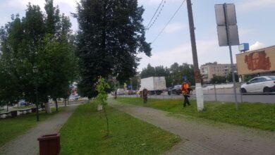 Photo of Работы по покосу травы ведутся вдоль улице Первомайской