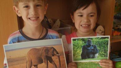Photo of Дошкольники путешествуют по жарким странам