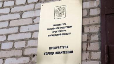 Photo of Прокуратура: жительница Ивантеевки покусала полицейского (видео)