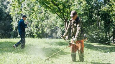 Photo of Ежедневно в Ивантеевке проводятся работы по облагораживанию городских территорий.