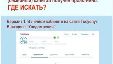 Photo of Новый механизм оформления сертификата на материнский капитал