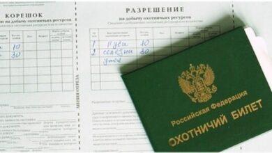 Photo of Щелковские угодья исчерпали пропускную способность выдачи разрешений на охоту