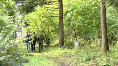 Photo of Живи, лес! Профессиональный праздник всех работников леса и отметили в минувшее воскресенье (видео)