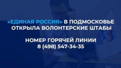Photo of В Подмосковье заработали волонтёрские штабы